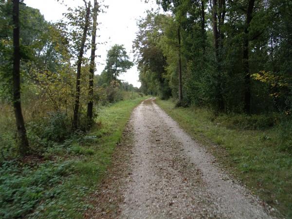 Feiner Radweg