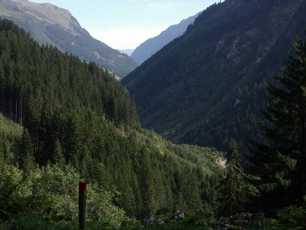 Waldreiche Gegend