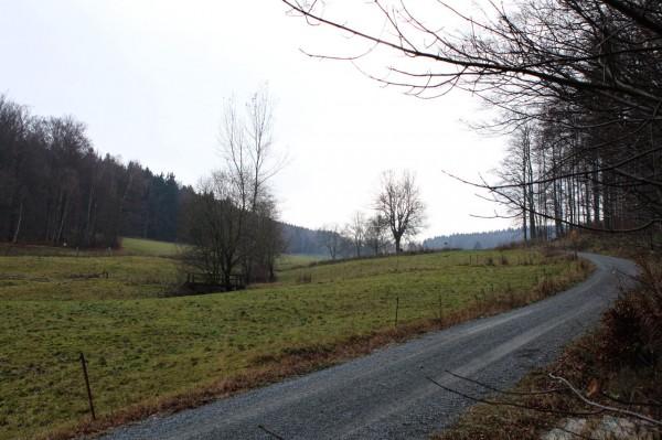 Hinauf Richtung Waldburg