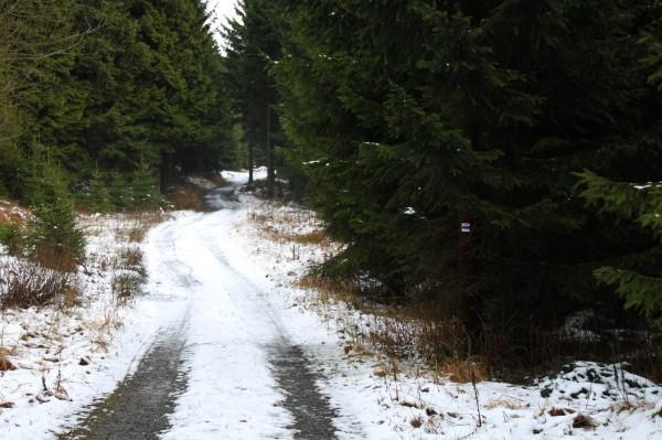 Grenzweg zur Bächelhütte
